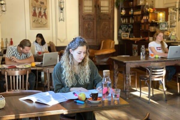 Werk- en studieplekken bij Hotel de Plataan